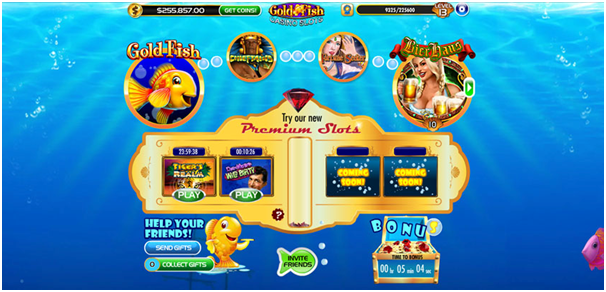 Features of the Gold Fish Casino App